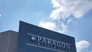 In A $1.2 Billion Deal, Catalent Might Purchase Paragon Bioservices